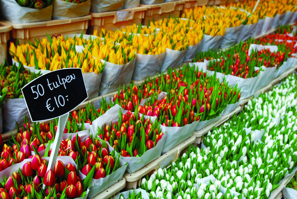 Bloemenmarkt-Amsterdam-normal_jpg_955